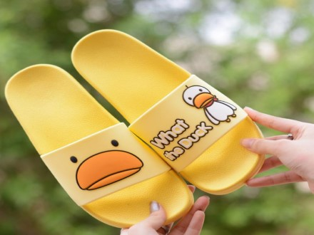 What The Duck Slides